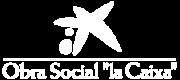 obra-social-la-caixa-sinfondo
